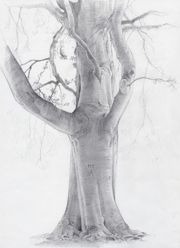 Drawing in graphite on paper 2003